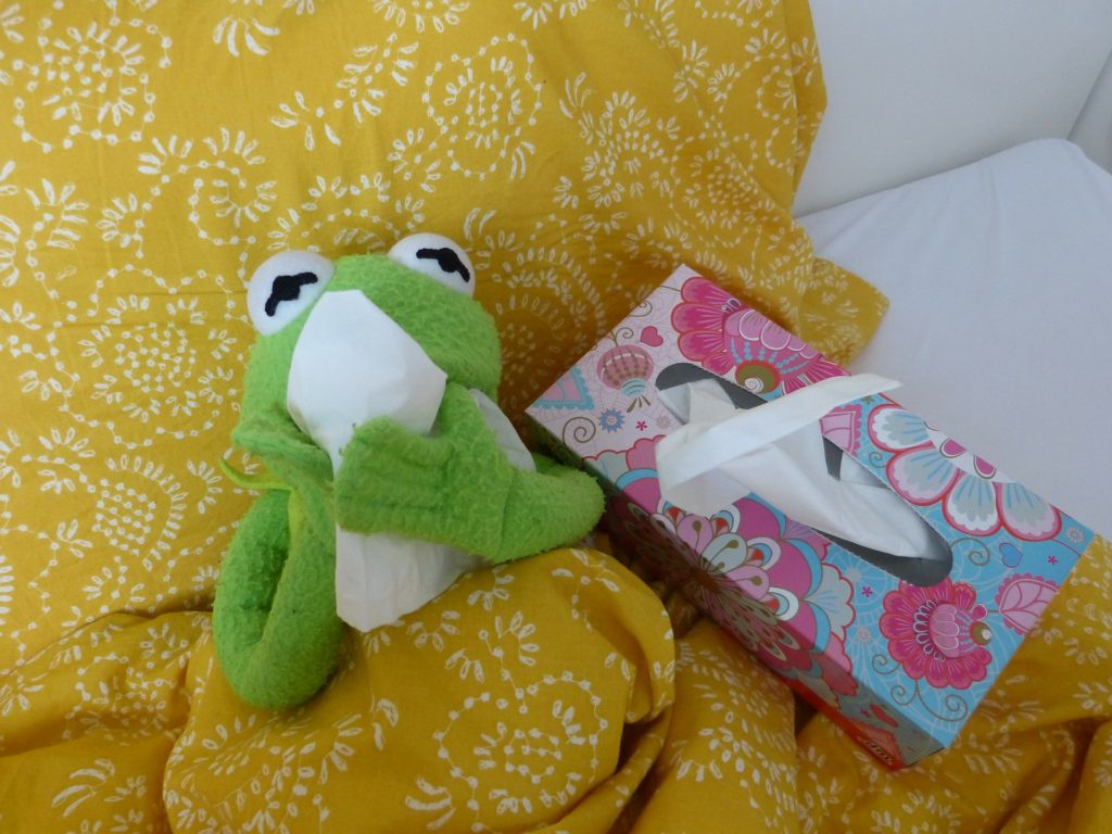 Kermit the Frog in bed, blowing his nose