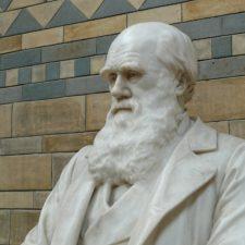 Statue of Charles Darwin
